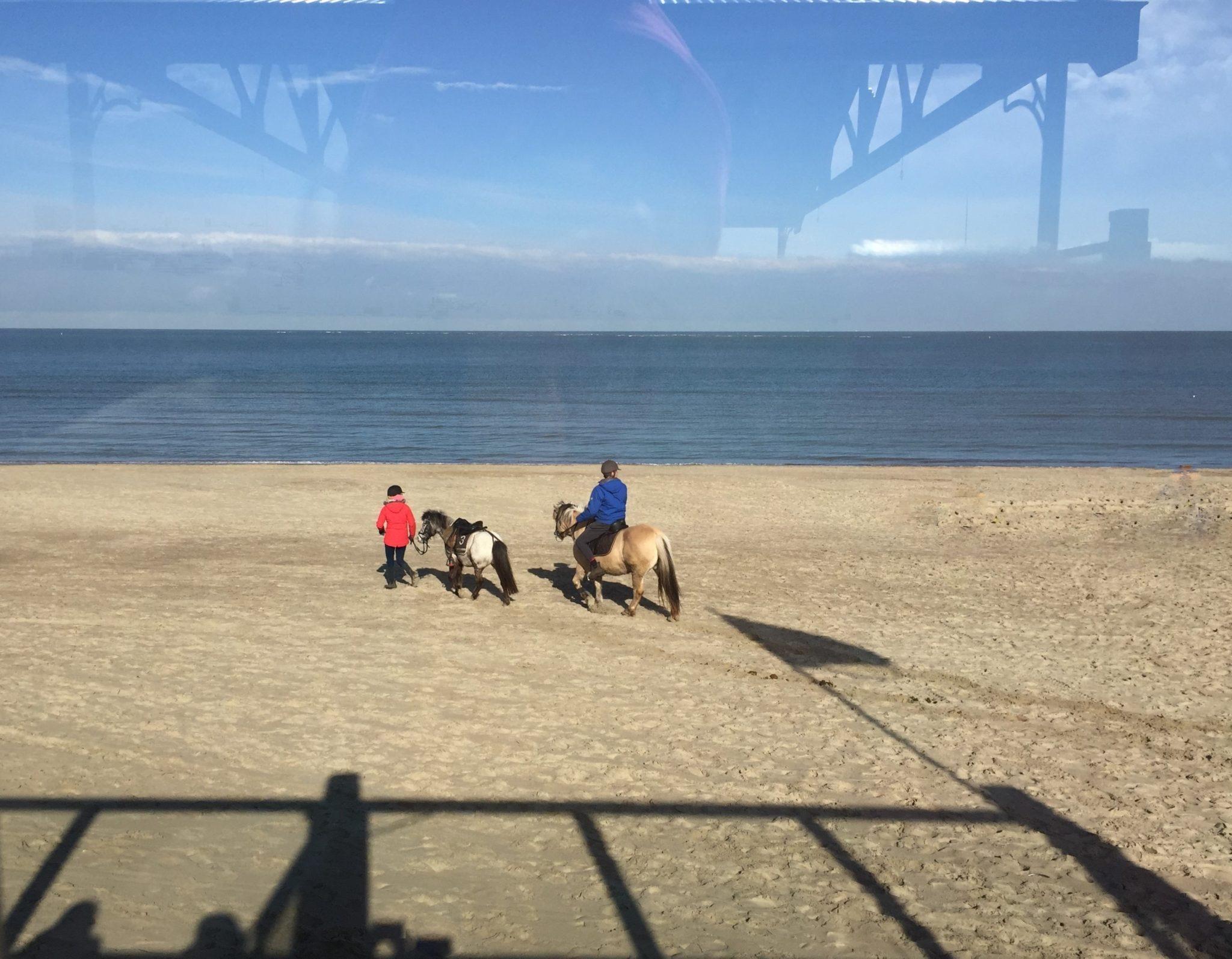 hubertine langemeijer paarden op het strand van Renesse
