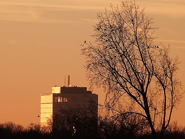 hubertine langemeijer zonsondergang nr2